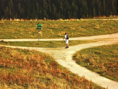 Discerning the Shift at the Crossroads