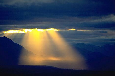 Revealing Light and Life Behind the Veil